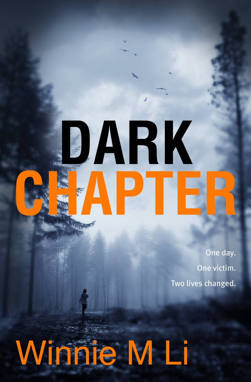 Dark-Chapter-by-Winnie-M-Li-_-Legend-Press